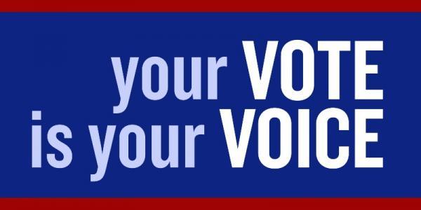 vote-625.jpg